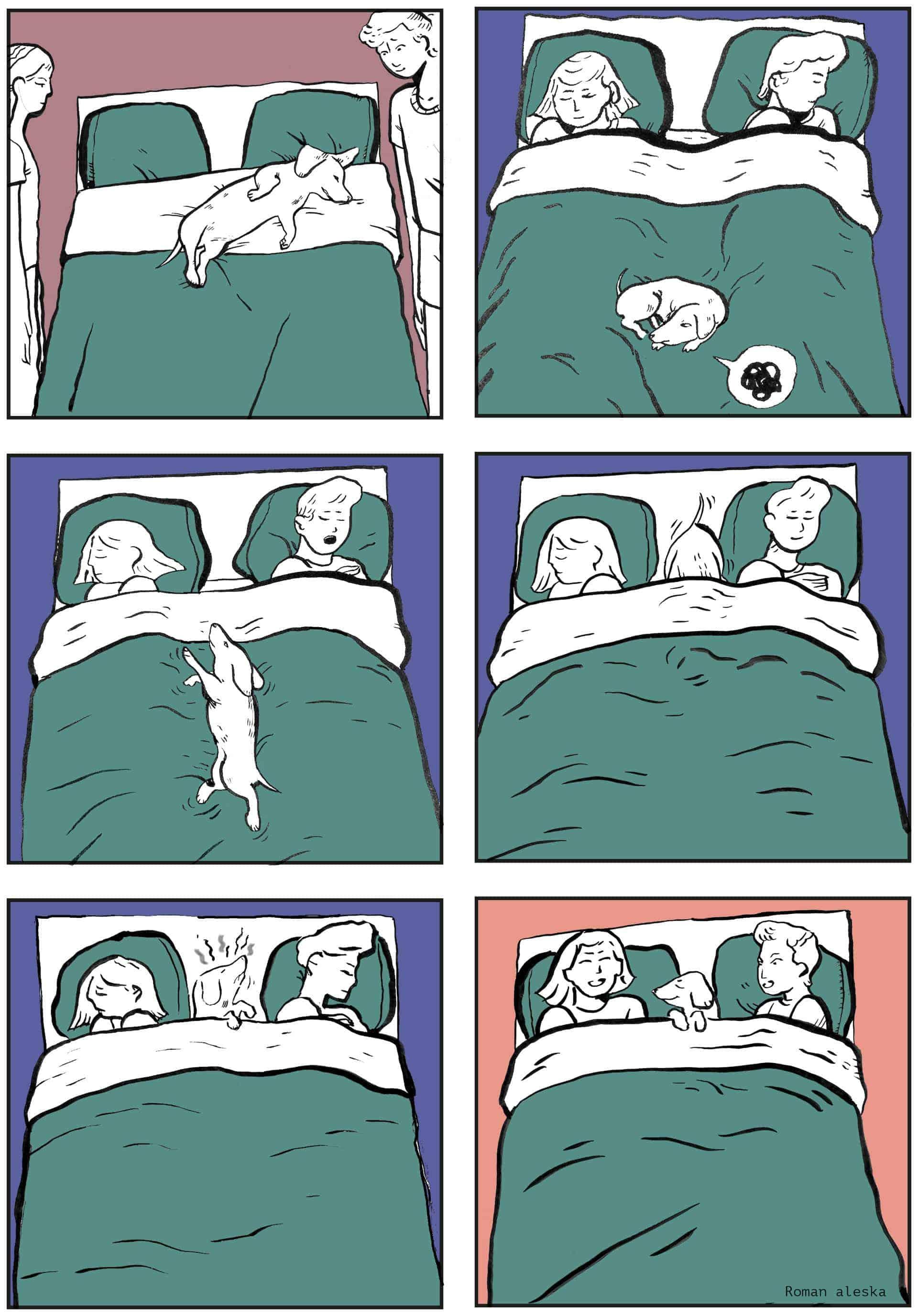 Griotte qui fait dodo dans le lit
