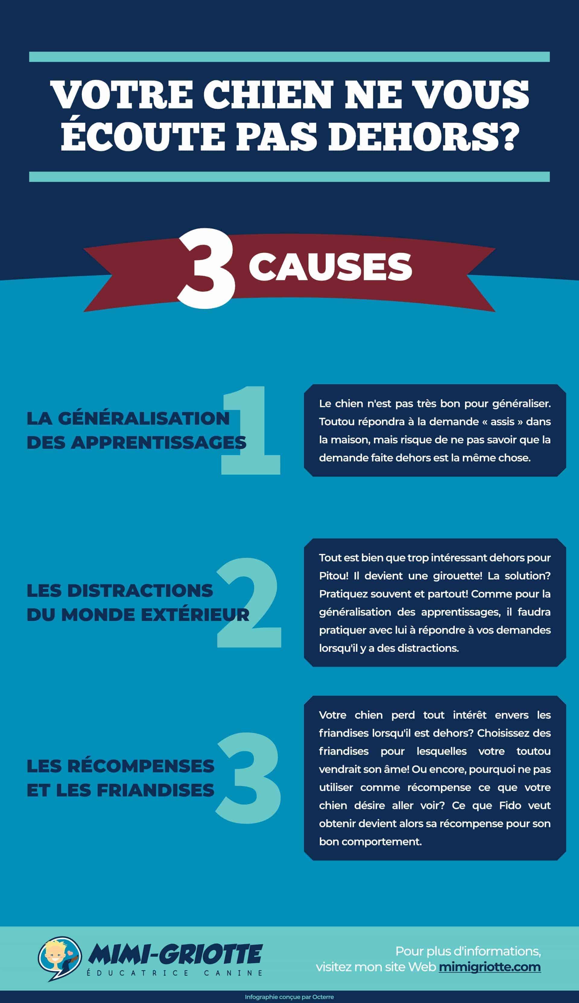 Infographie sur les 3 causes pourquoi un chien n'écoute pas dehors