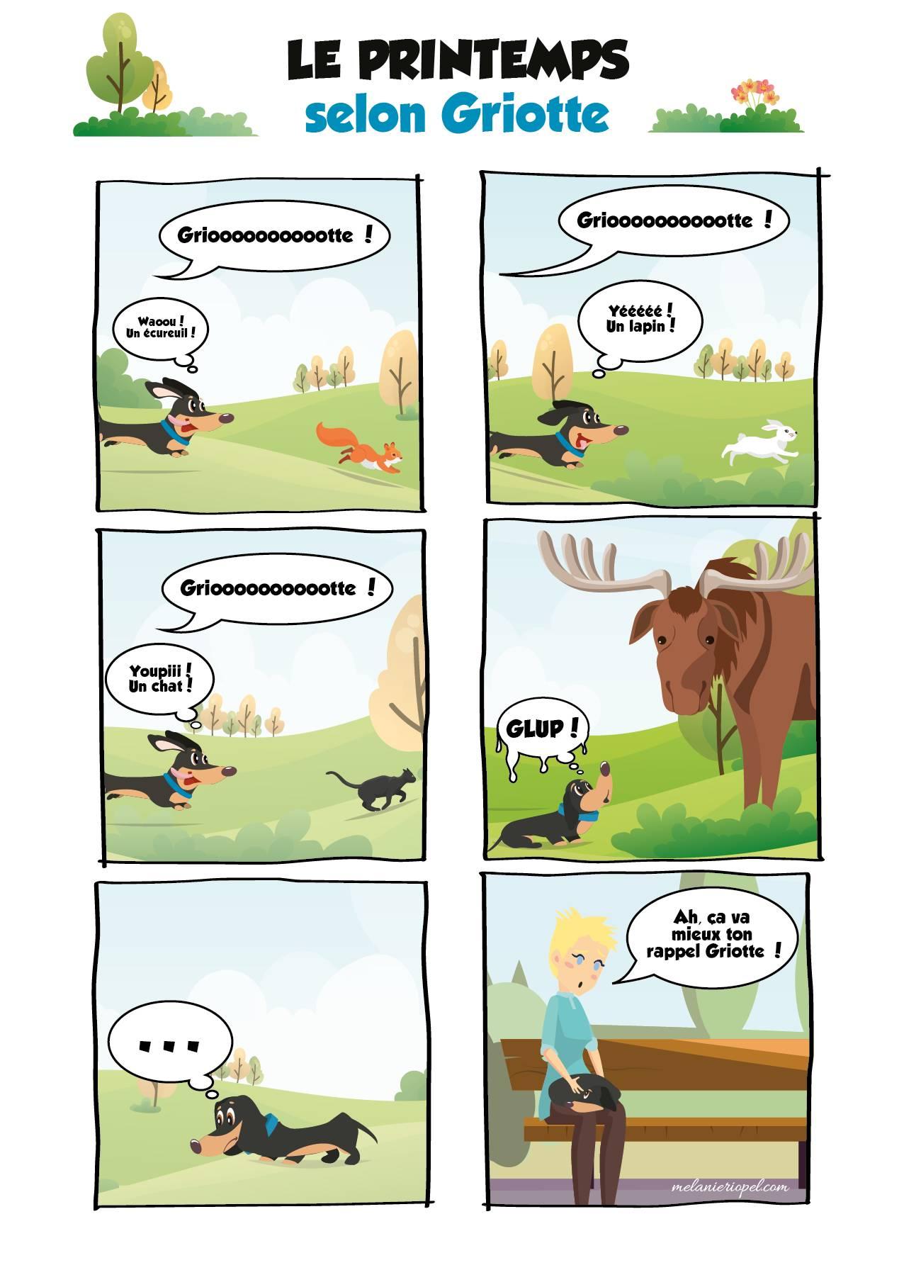 Bande dessinée d'un teckel qui court après des animaux