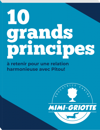 10-principes-book-cover-3d